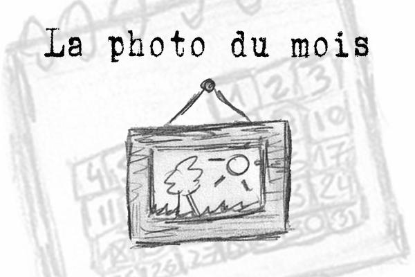 photodumois