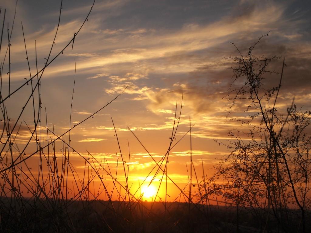 Désert du Thar Rajasthan Inde blog Lemagalire