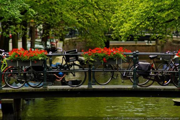 576x383xnormal_Balade_le_long_des_canaux_d_Amsterdam_-01.jpg.pagespeed.ic.zJOTcT39Oe