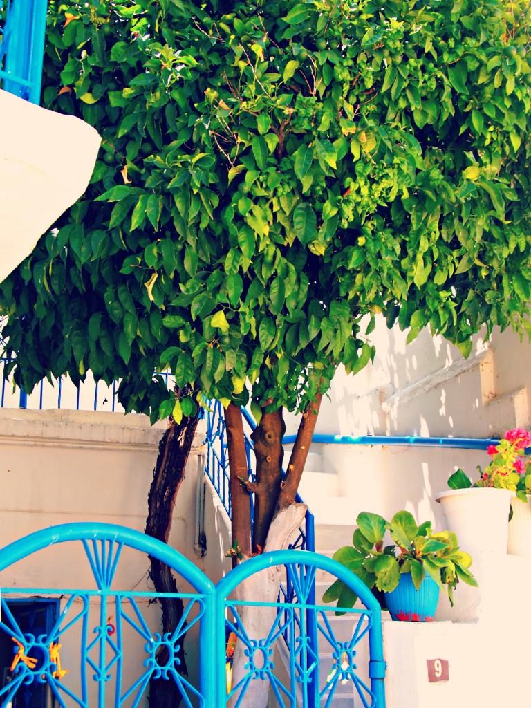 omodos chypre blog lifestyle marseille