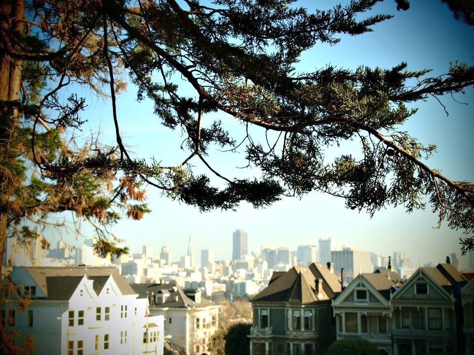 San Francisco Voyage