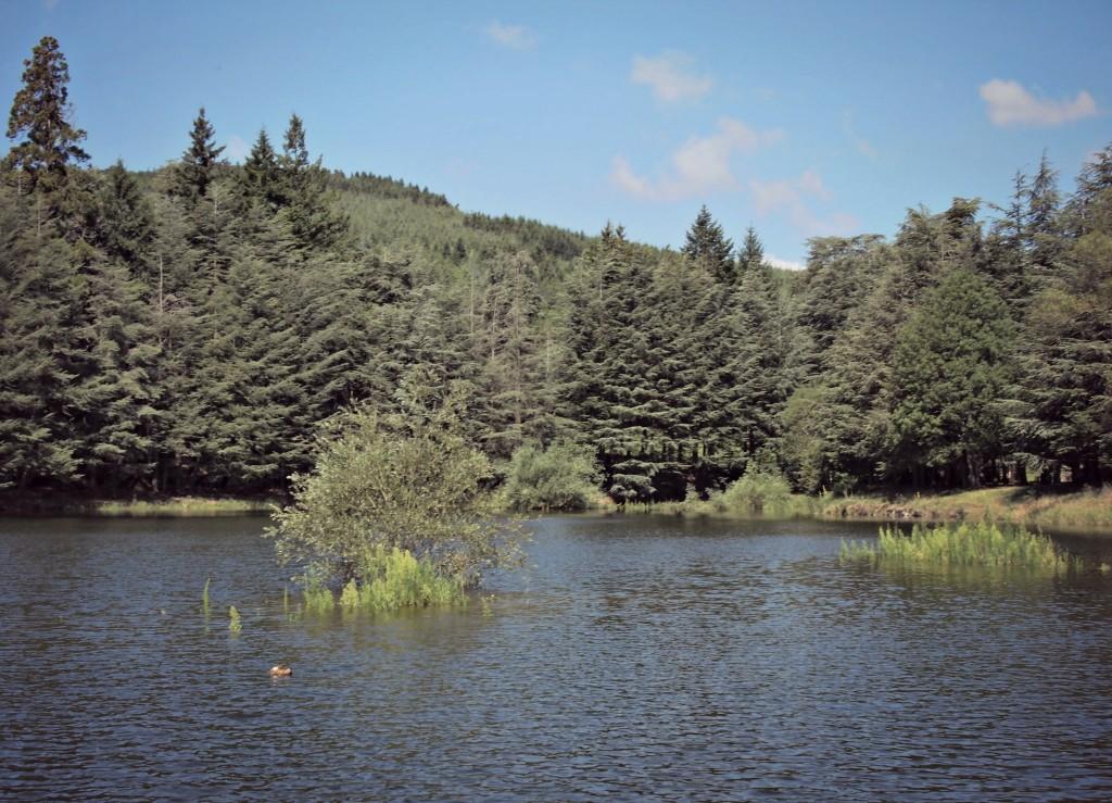 Le Lac du Ternay, l'Ardèche Verte...