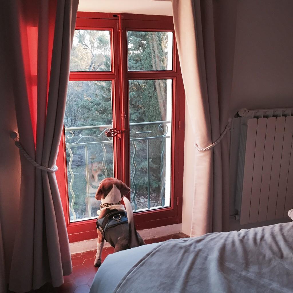 Le Moulin de Varrians blog lifestyle marseille