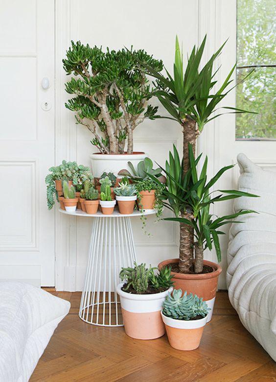 jardin d'hiver blog lifestyle marseille