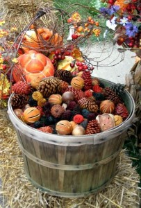 automne blog lifestyle marseille