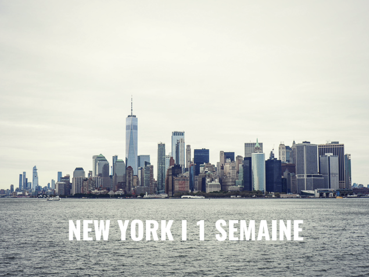 New York lemagalire